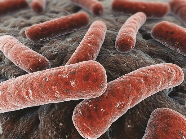 Bệnh lao là 1 bệnh truyền nhiễm do trực khuẩn lao Myobacterium tuberculosis phát triển gây nên.