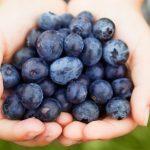 Loại quả nào mà người đường huyết cao có thể ăn?