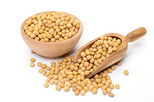 nhung-dieu-co-the-ban-chua-biet-ve-protein