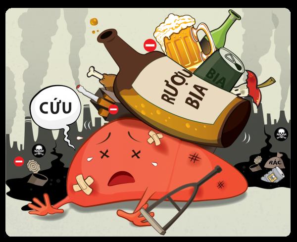 Rượu gây hại cho gan và các cơ quan trong cơ thể