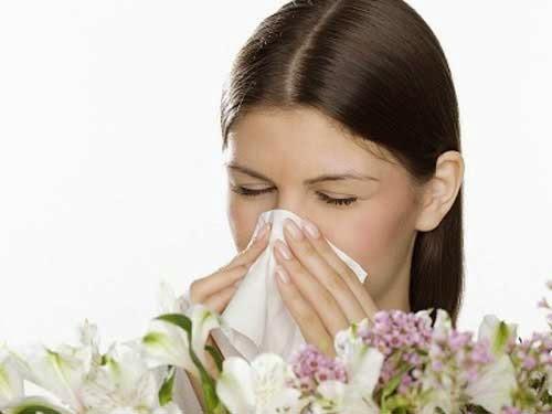 Viêm mũi dị ứng là bệnh lý thường gặp