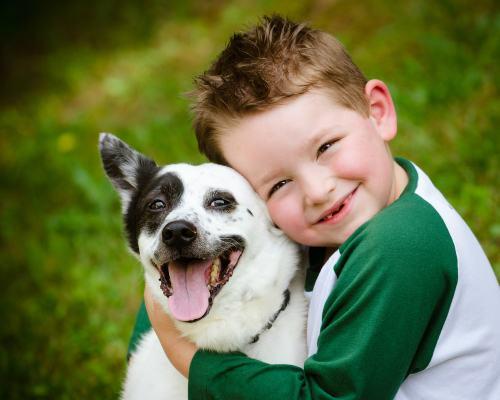 Chó và mèo đều là những tác nhân quan trọng gây khởi phát cơn hen.