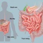 Dấu hiệu cảnh báo bệnh tiêu hoá không được bỏ qua