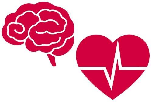Huyết áo lúc tăng lúc giảm ảnh hưởng đến tim mạch