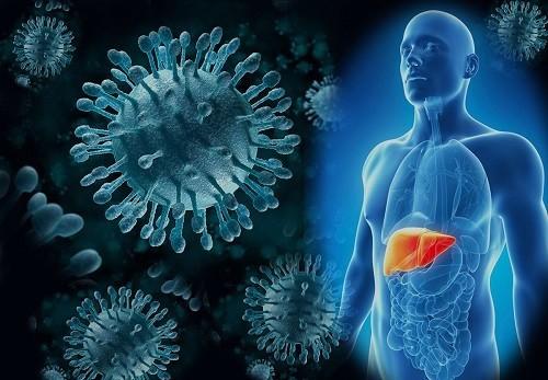 Khi mắc bệnh viêm gan C mà vẫn uống rượu - ngay cả một lượng rất nhỏ - có thể kết hợp với những tác động của virus viêm gan C làm tăng nguy cơ dẫn tới xơ gan, ung thư gan và thậm chí là tử vong.