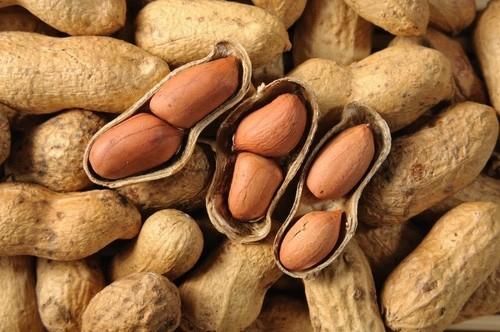 Trong lạc chứa nhiều sterol thực vật, đây là một loại hợp chất stero tồn tại phổ biến ở trong các loại thực phẩm có vỏ cứng