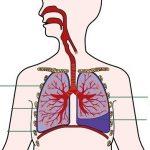 Tràn dịch màng phổi nguy hiểm không?