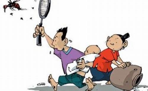 Diệt muỗi, diệt bọ gậy phòng ngừa sốt xuất huyết