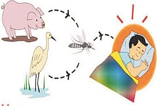 Bệnh truyền nhiễm cần được phát hiện sớm điều trị hiệu quả để tránh lây lan cho mọi người