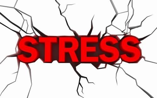 Stress kéo dài cũng là nguyên nhân khiến cơ thể mệt mỏi, hay buồn ngủ
