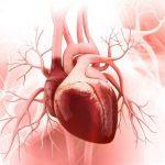 Tìm hiểu về bệnh hở van tim 3 lá