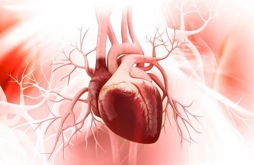 bệnh hở van tim 3 lá