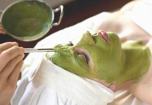 Sử dụng rau ngót điều trị viêm lỗ chân lông