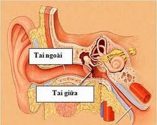 Viêm tai giữa là bệnh lý viêm nhiễm đường hô hấp có thể gặp ở mọi lứa tuổi.
