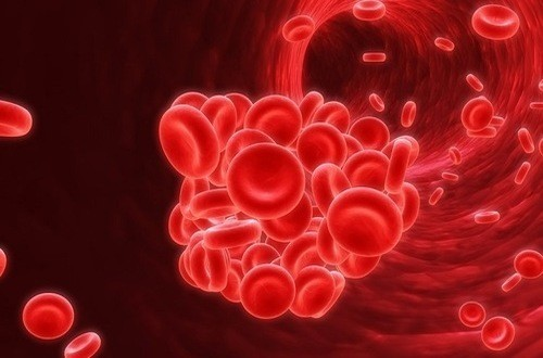 Bệnh máu khó đông là nguyên nhân gây nên triệu chứng tiểu ra máu tươi