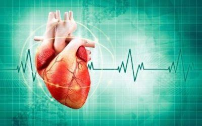 Nhịp tim chậm nguy hiểm không?