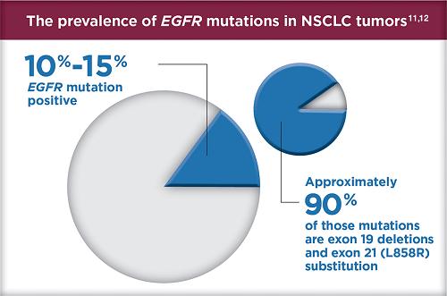Xét nghiệm EGFR là gì