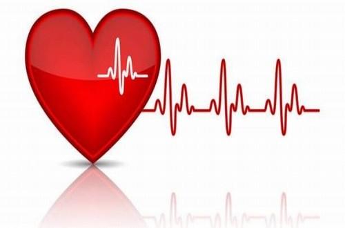 Nhịp tim người bình thường lúc nghỉ ngơi trong khoảng 60-100 nhịp/ phút