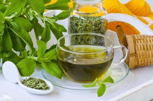 Lá trà xanh có tác dụng tuyệt vời trong bảo vệ các tế bào chống lại tổn thương DNA do các gốc tự do gây ra