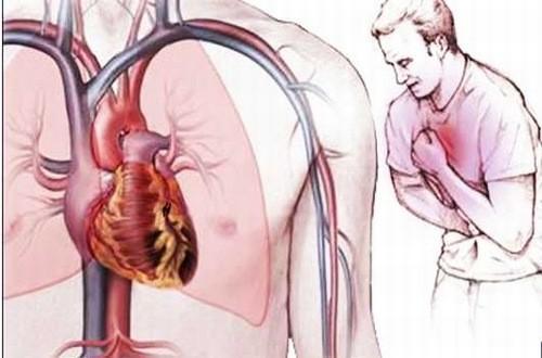 Chỉ số ure trong máu tăng có thể là dấu hiệu cảnh báo bệnh tim mạch