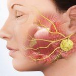 Viêm tuyến nước bọt mang tai có lây không?