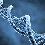 Ung thư dạ dày có di truyền không?
