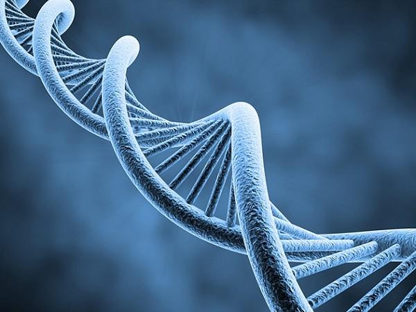Một số đột biến gen làm tăng nguy cơ mắc ung thư dạ dày