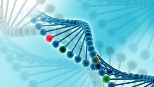Di truyền trong ung thư gần như rất ít