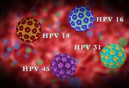 Virus HPV nguy hiểm như thế nào