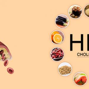 Chỉ số HDL là gì? HDL giảm có nguy hiểm không?