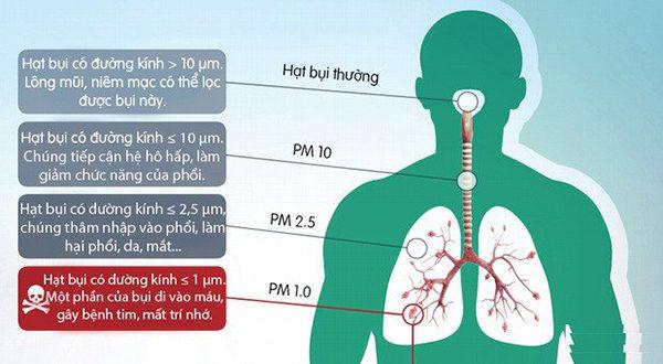 tác hại của bụi mịn đến hệ hô hấp con người