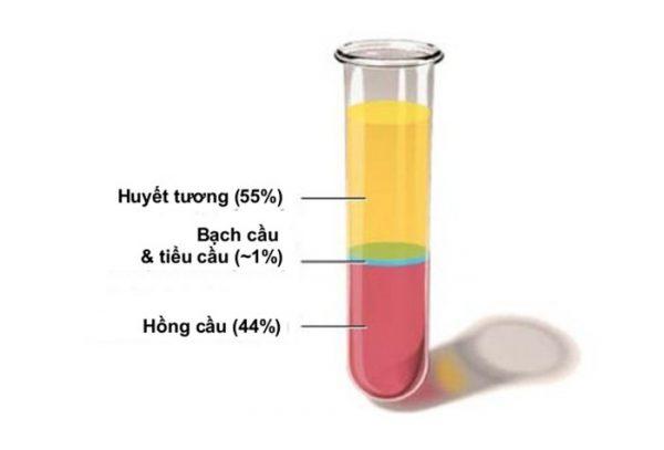 Các thành phần máu trong tổng phân tích tế bào máu