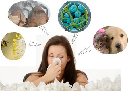 các yếu tố gây viêm mũi dị ứng