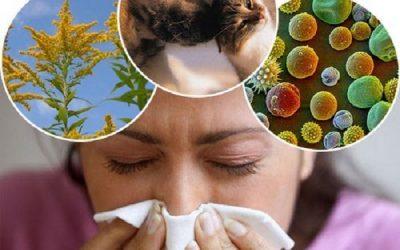 Những điều cần biết về bệnh viêm mũi dị ứng