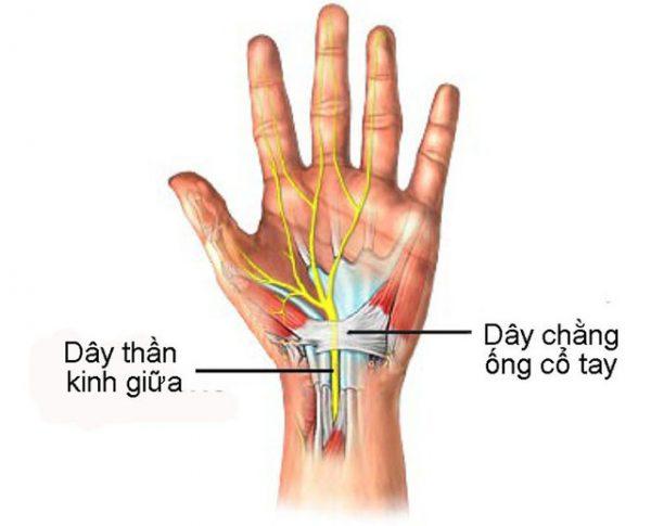 tê mỏi chân tay là biểu hiện của những bệnh gì