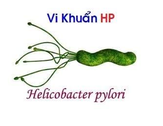 Vi khuẩn HP dễ lây truyền qua ăn uống, hôn, tiếp xúc nước bọt và qua phân