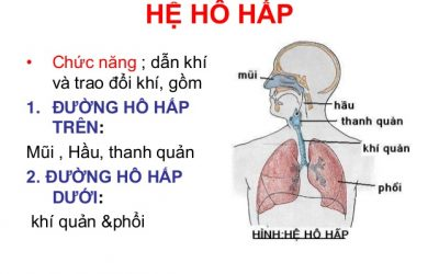Cùng chuyên gia phòng bệnh nhiễm trùng đường hô hấp trên ở trẻ