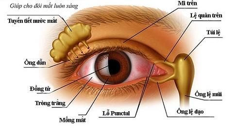 gỉ mắt bất thường là như thế nào
