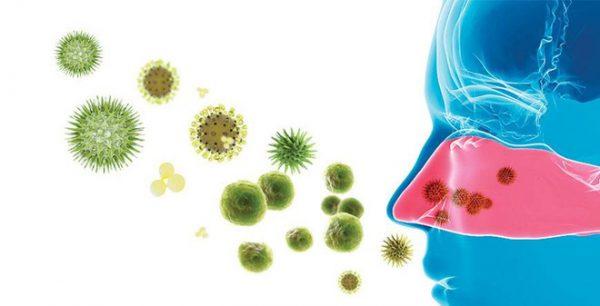 nguyên nhân gây bệnh viêm mũi mủ ở trẻ em là do virus, vi khuẩn