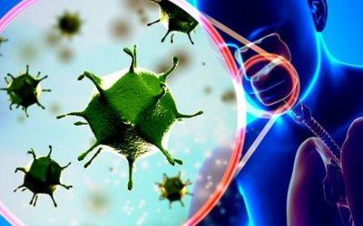 Tổng quan về virus Corona
