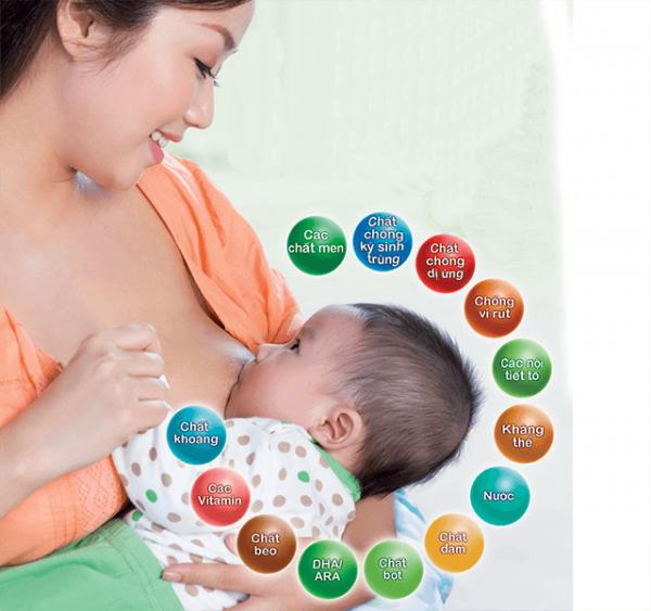 cac chất dinh dưỡng trong sữa mẹ