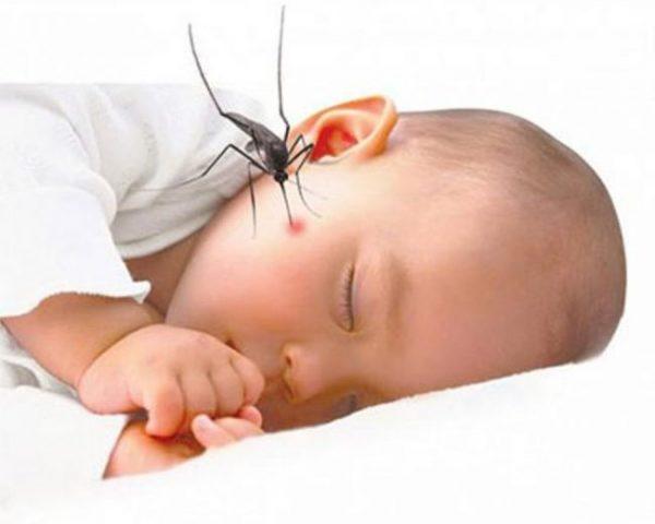 Trẻ bị muỗi cắn có thể nặng, nhẹ nhiều hoặc ít tùy thuộc vào cơ địa của bé và loại muỗi truyền bệnh.