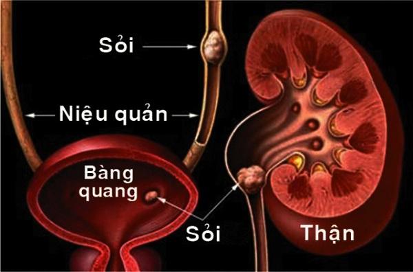 hang-nghin-benh-nhan-tin-tuong-tan-soi-khong-can-mo-tai-benh-vien-thu-cuc