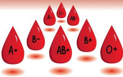 Có bao nhiêu nhóm máu, cách phân loại nhóm máu