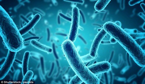 tiêu chảy nhiễm khuẩn ở trẻ em