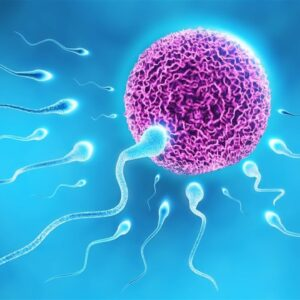 Những điều nên biết về phương pháp bơm tinh trùng vào tử cung