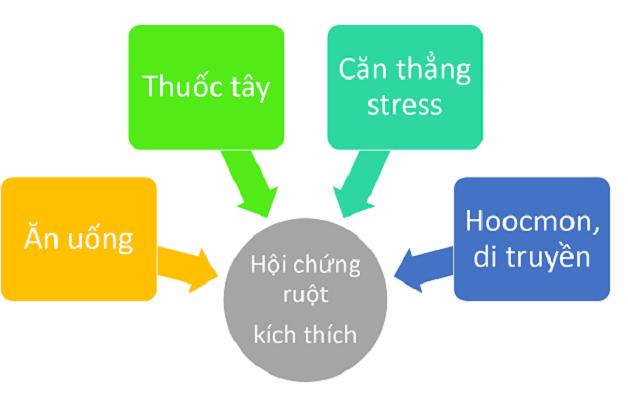 Nguyên nhân chính gây hội chứng ruột kích thích như: stress, di truyền,...