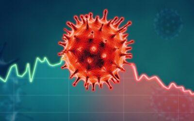Thế giới hơn 30,6 triệu người nhiễm nCoV, Việt Nam đã chữa khỏi 941 bệnh nhân