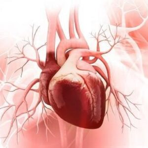 Bệnh hở van tim và những điều bạn cần phải biết