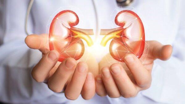 Suy thận nhẹ có thể điều trị được dựa vào phác đồ của bác sĩ kết hợp chế độ sinh hoạt lành mạnh